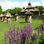 beehives  ukraine 150x150 №5 Pirogovo – open air museum