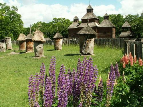 beehives  ukraine №5 Pirogovo – open air museum